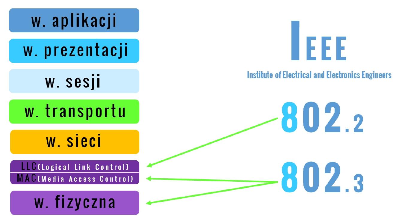 IEEE warstwa łącza danych